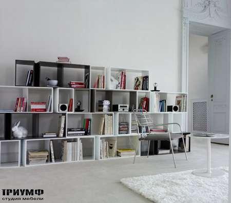 Итальянская мебель Ligne Roset - книжный шкаф Cuts
