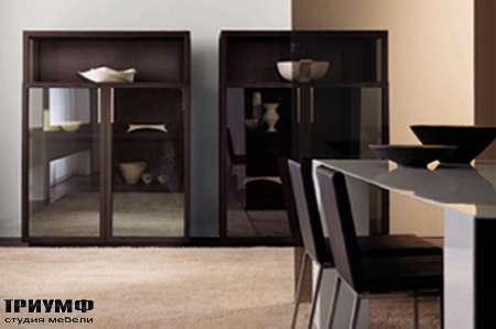 Итальянская мебель Longhi - Шкаф Status 500