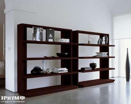 Итальянская мебель Longhi - Шкаф книжный Status 500