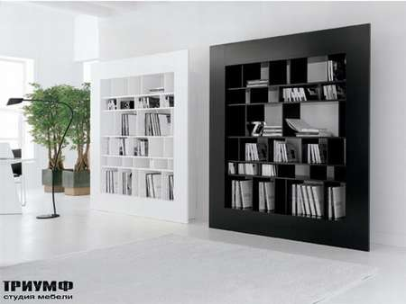 Итальянская мебель Cattelan Italia - Книжный шкаф Window