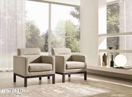 Итальянская мебель CTS Salotti - Кресло модерн из дерева и шёлка, модель Francy
