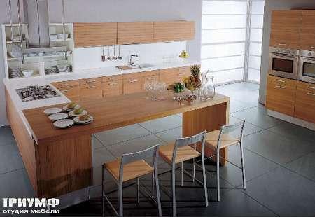 Итальянские кухни Tomassi cucine - alluminia