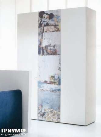 Шкаф Visual с изображением Topolino