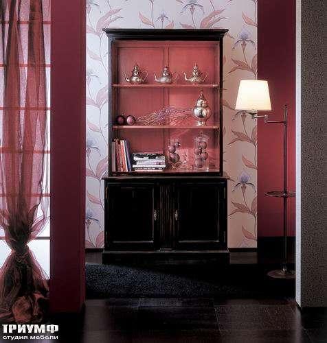 Итальянская мебель Salda - Книжный шкаф cod: 8523