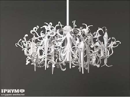 Освещение Brand Van Egmond  - Люстра Flower Power FPHL120