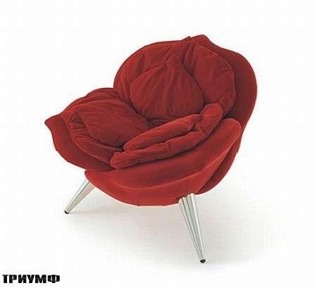 Итальянская мебель Edra - кресло Rosa Chair
