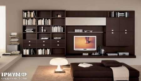 Итальянская мебель Map - Библиотека венге Day Concerto