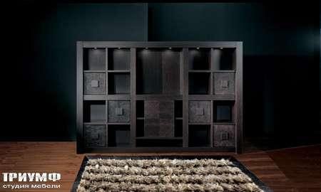 Итальянская мебель Smania - Стенка Barbook Expo с квадратными ячейками, венге