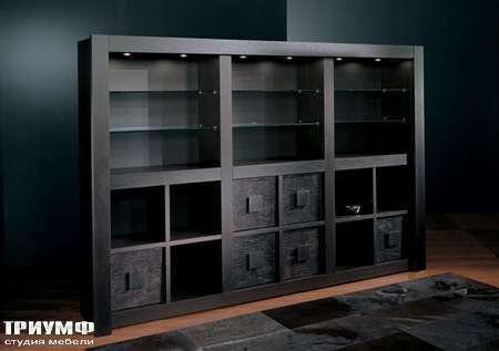 Итальянская мебель Smania - Библиотека Barbook со стеклянными полками, венге