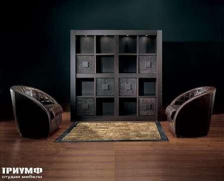 Итальянская мебель Smania - Стенка под книги Expouno