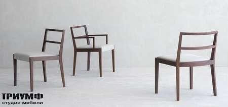 Итальянская мебель Olivieri - Стул Thea в дереве и коже
