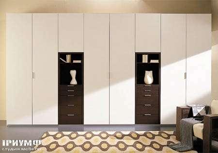 Итальянская мебель Vittoria - шкаф Soluzioni  battente