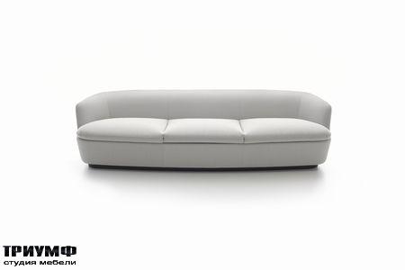 Итальянская мебель Cappellini - orla