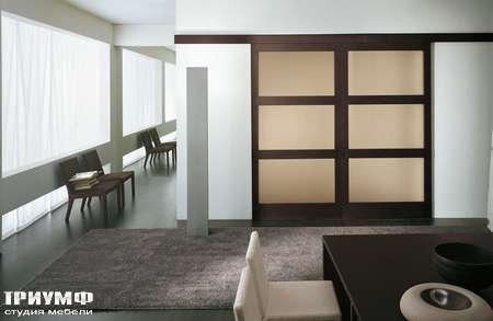 Итальянская мебель Longhi - Дверь раздвижная Shadow Tris