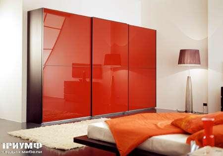 Итальянская мебель Vittoria - шкаф Tecno  vetro scorrevole