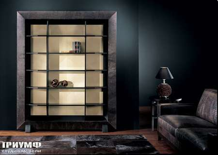 Итальянская мебель Smania - Шкаф книжный Bispy, задняя стенка в светлом дереве