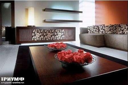 Итальянская мебель Rattan Wood - Комод Shiny, диван Lotus