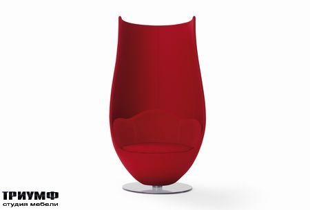 Итальянская мебель Cappellini - wanders tulip armchair