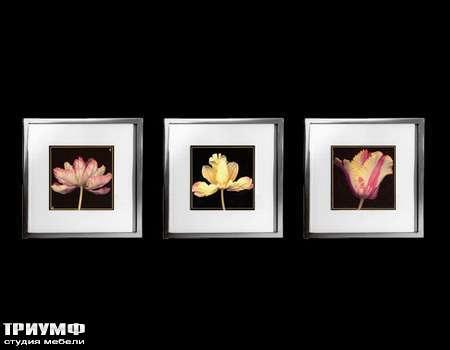 Итальянская мебель Cantori - коллекция Tulipani grandi
