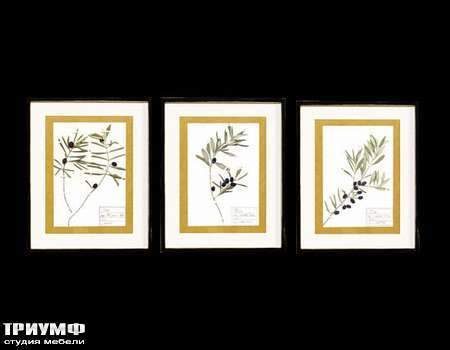 Итальянская мебель Cantori - коллекция Olive.