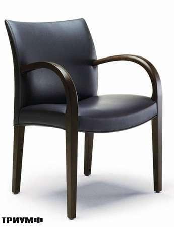Итальянская мебель Potocco - кресло Sunset
