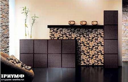 Итальянская мебель Rattan Wood - Шкаф Bloom-45B