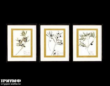Итальянская мебель Cantori - коллекция Olive