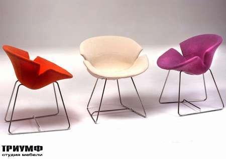 Итальянская мебель Giovannetti - Кресло Flower Daisy