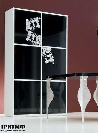 Итальянская мебель Moda by Mode - Шкаф Chic с раздвижными дверьми