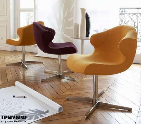 Итальянская мебель Ligne Roset - стул Alster
