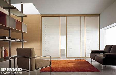 Итальянская мебель Longhi - Раздвижная перегородка Wind бук, стекло