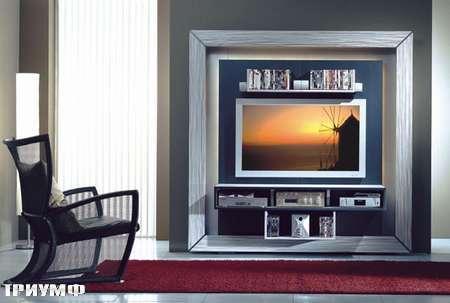 Итальянская мебель Vismara - стенка frame home