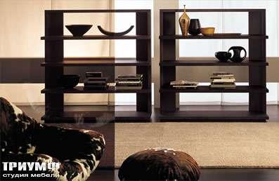 Итальянская мебель Longhi - стелаж 500 status lib