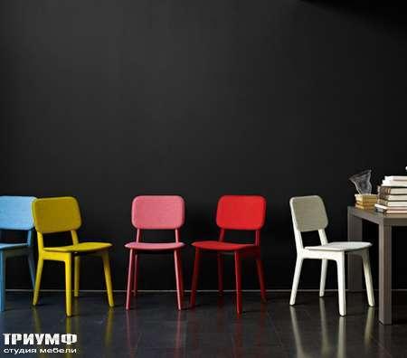 Итальянская мебель Ligne Roset - стулья Felt