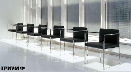 Итальянская мебель Rivolta - стулья Vesta