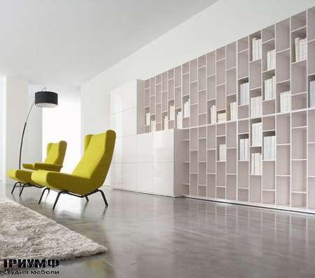 Итальянская мебель Ligne Roset - книжный шкаф Book&Look