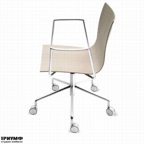 Итальянская мебель Lapalma - Кресло THIN-S19