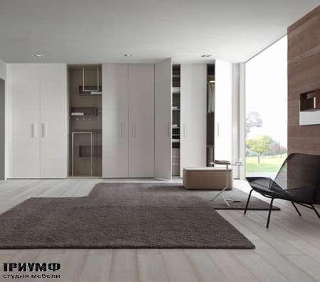 Итальянская мебель Ligne Roset - шкаф Hide & Seek