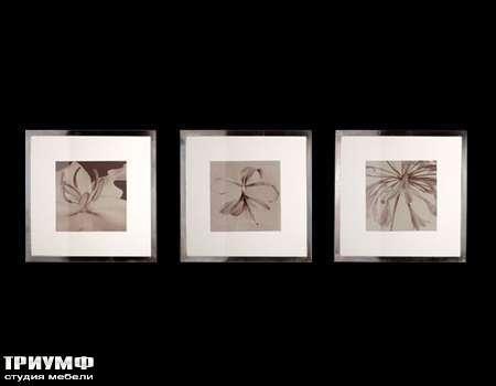 Итальянская мебель Cantori - fiori