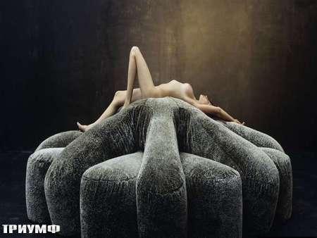 Итальянская мебель Edra - диван ASTER PAPPOSUS