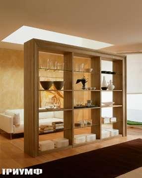 Итальянская мебель De Baggis - Стенка 20-651