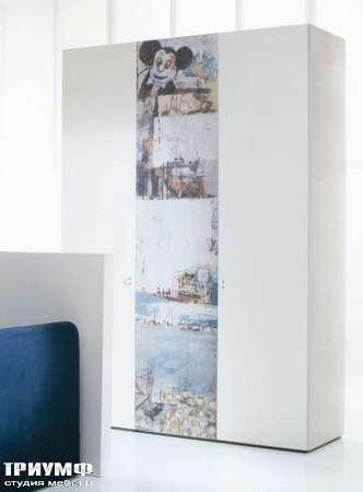 Итальянская мебель Di Liddo & Perego - Шкаф Visual с изображением Topolino