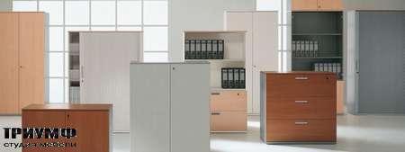 Итальянская мебель Frighetto - file wood