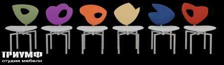 Итальянская мебель Il Loft - стулья samba