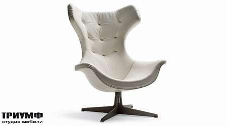 Итальянская мебель Poltrona Frau - кресло Regina Ii