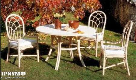 Итальянская мебель Rattan Wood - Стул Po66, стол Rio