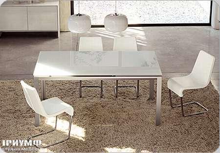 Итальянская мебель Bonaldo - стол Chat