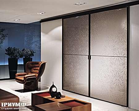 Итальянская мебель Longhi - Дверь раздвижная стекло с орнаментом, Spark