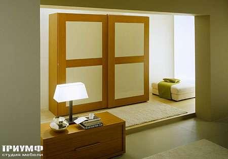 Итальянская мебель Vittoria - шкаф Telaio  scorrevole