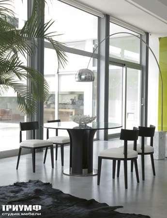 Итальянская мебель Porada - Обеденная группа frog